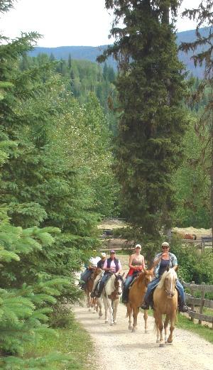 guiding trail rides