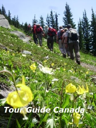 guided hiking trips in Canada