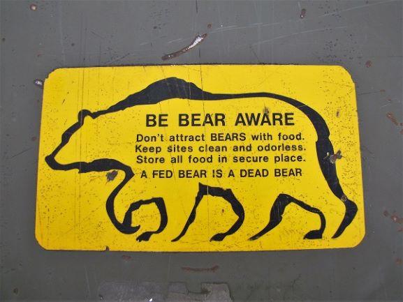 bear etiquette