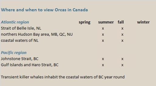 orca canada