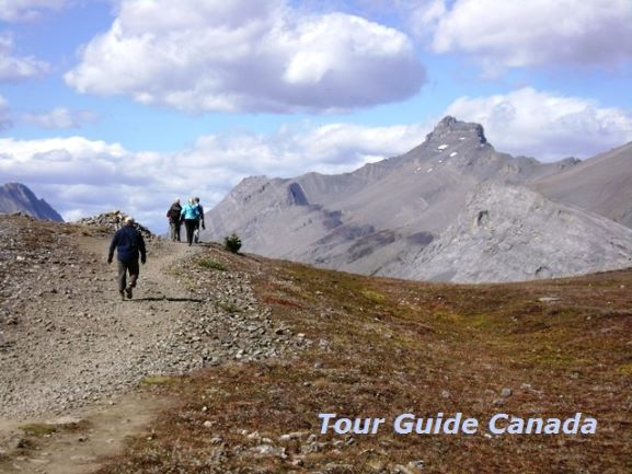 guided hiking in the alpine