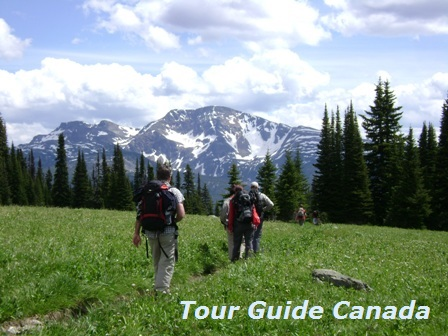a guided hiking trip in Wells Gray Park, BC