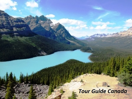 Peyto Lake along one of worlds best road trips: Icefields Parkway, Alberta