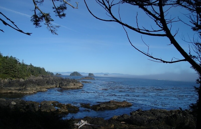 wild pacific trail, ucluelet bc,