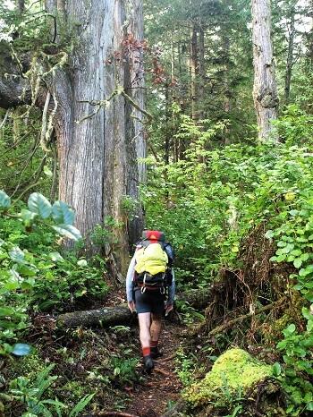 backpacking west coast trail