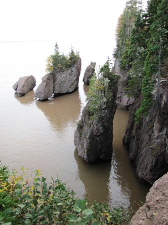 high tide at Hopewell Rocks